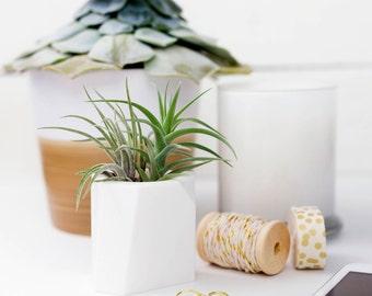 SUCCULENT PLANTER    Cactus Planter - Geometric Planter - Indoor Planter - Air Plant - Cactus Pot - Modern Planter - Plant Pot