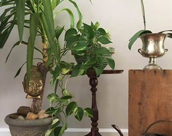 Small Round Queen Anne Table or Plant Stand / Vintage Pedestal Table / Mid Century
