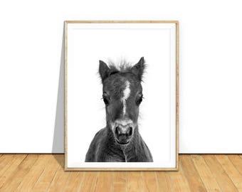Woodland Nursery Art Printable, Baby Horse Foal Wall Art Print, Black White Monochrome Nursery Decor Baby Animals Art Animal Printable bhpbw