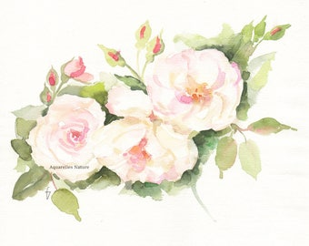 English old fashioned roses, Original watercolour painting, en plein air painting, pink roses blooming, rose painting, rose watercolor