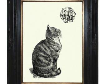 Cat Art Print Geometric Shape Form Polyhedron Victorian Steampunk Poster Pet Engraving Surrealism I