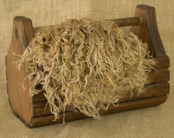 Washed Fawn Suri Alpaca Locks: 1 ounce (Dudley) Fiber for Felting, Spinning or Doll Hair