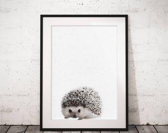 Hedgehog print, Woodland animals, Hedgehog art, Printable art print, Nursery decor, Animal art, Baby animals, Kids art, Boy nursery art