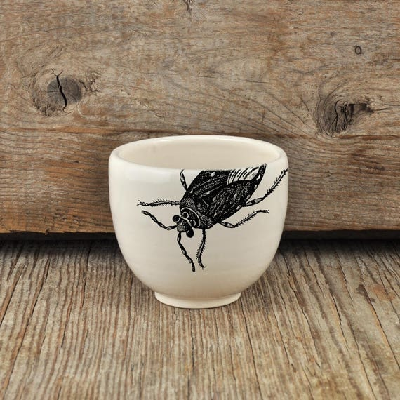 Porcelain espresso / tea cup with vintage INSECT prints