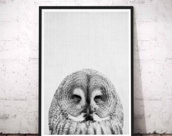 Owl Print, Funny Bathroom Decor, Woodland Nursery Wall Art, Forest Animal Wall Decal, Baby Shower Gift, Baby Animal Print, Kids Large Poster