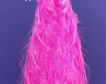 Pink Peacock Taxidermy Bird Mount!