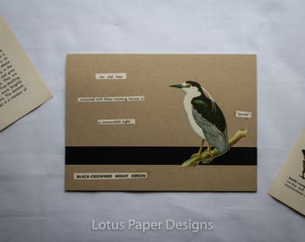Handmade Blank Greeting Card (Folded A6) - Black-Crowned Night Heron - Golden Guide to BIRDS