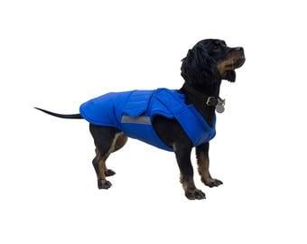 Dachshund Extra Warm Winter Dog Coat - Gray Dog Jacket - Custom Dog Winter Coat - Waterproof / Fleece - Custom made for your dog