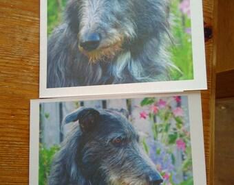 2 x Exmoor Lurcher greetings card x 2