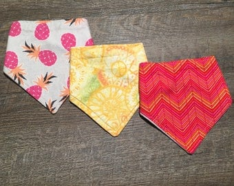 Tropical Bandana Bibs