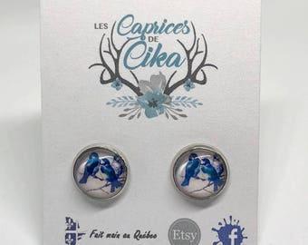 Earrings cabochon blue birds