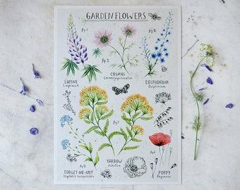 Garden Flowers - Print A4
