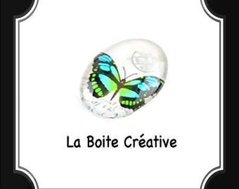 CABOCHON oval Butterfly blue TURQUOISE and green in glass 18 x 13 mm