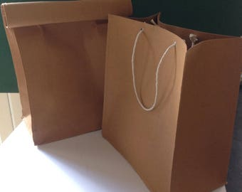 Looks Like A Paper Bag! Lunch Bag
