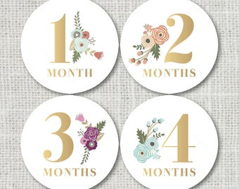Baby Girl Monthly Stickers Baby Month Stickers Floral Baby Girl First Year 12 Month Growth Sticker Set Baby Photo Props Baby Shower Gift