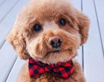 Dog Bow Tie Collar, Cat Bow Tie Collar, Buffalo Plaid, Dog Bow Tie, Cat Bow Tie, Cat Collar, Rose Gold Hardware, Gold Buckle, Wedding Dog
