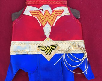 Cosplay Wonder Woman costume for dogs