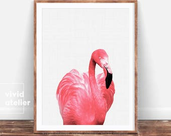 Flamingo Print, Flamingo Art, Tropical Wall Art, Printable Flamingo, Flamingo Poster, Beach Decor, Art Print, Flamingo Photo, Pink Flamingo