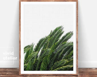 Palm Leaves Wall Art, Palm Leaf Prints, Tropical Leaf Decor, Tropical Leaves, Leaves Print, Palm Wall Decor, Palm Digital Print, Palm Poster