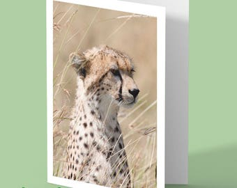Cheetah greeting card - cheetah - greetings card - nature photograph - personalised card - african wildlife - any occasion card
