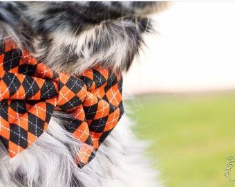 Argyle bow tie, bow tie, dog bow, dog bowtie