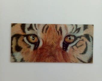 Tiger Eyes Refrigerator Magnet