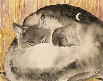 IN WOLF DREAM