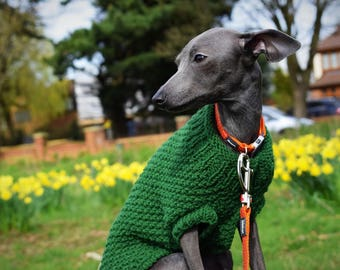 Italian Greyhound Dog sweaters with snood - Dark Green