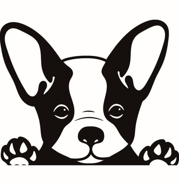 Download French Bulldog #1 Dog Breed K-9 Animal Pet Puppy Paws ...