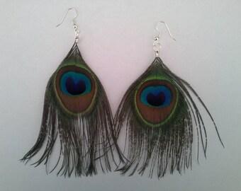 Peacock feather Stud Earrings