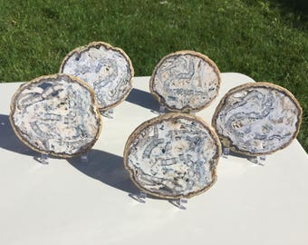 5 Piece Large Natural Agate Slices