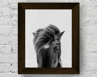 horse print, animal wall art, equestrian photo, horse poster, black white animal, horse art, digital download, animal printable artwork