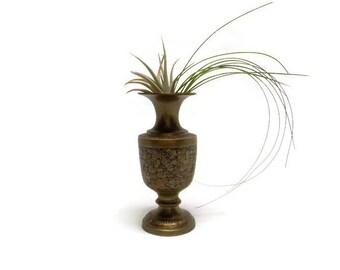 Air Plant Holder - Air Plant Planter - Vintage Vase - Vintage Brass Vase - Etched Enamel Brass Vase - Made in India - Tillandia Arrangement