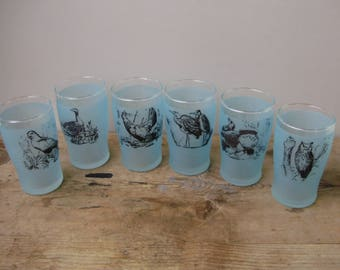 Unused,Vintage ,Hungarian, drinking set,6 pcs glasses,bird pattern