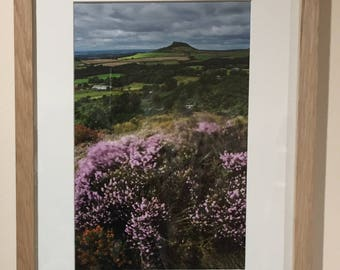 View from Gribdale - Photographic Print