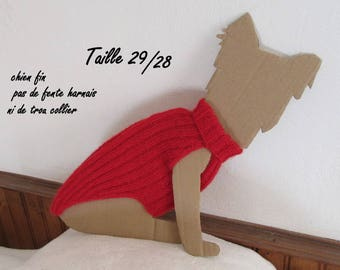 Red Sweater for yorkshire, chihuahua or kitten
