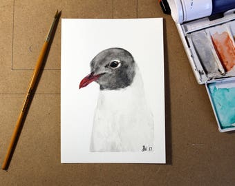 ORIGINAL - Black Headed Gull in Watercolour A6.
