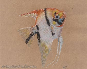 "Drawing angelfish original coloured pencils 7,8 x 7,8"" / ArtbySandraZereike"