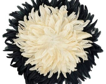 Decorative Feather Wall Art