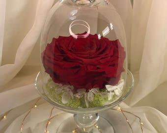 Pink glass pedestal