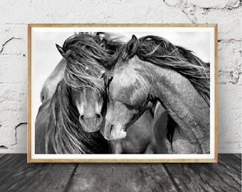 Impression cheval, Photographie noir et blanc, cheval imprimé Wall Art, Wild Horse Photo, impression de désert, , deux chevaux