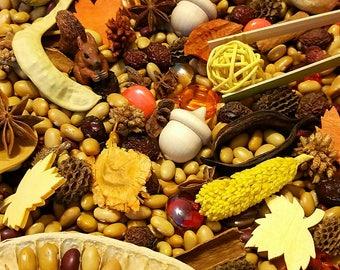 Fall Sensory Bowl, Reggio Emelia, Montessori, Loose Parts w/ Schleich Squirrel, Preschool Learning, Provocation, Autumn Nature Table
