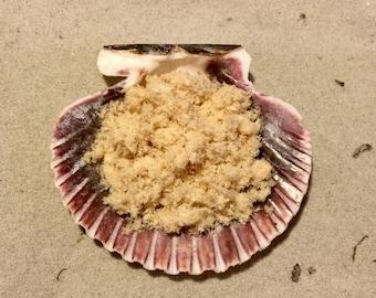 Chicken ~ Hermit Crab Food