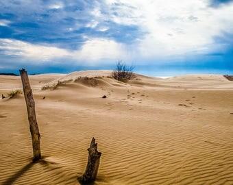 Evening Dune Photograph