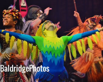 Festival of the Lion King photo