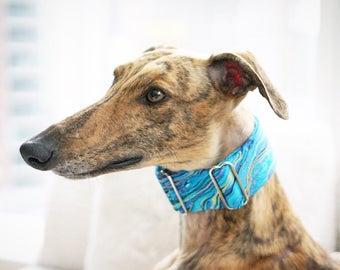 Martingale collar, Greyhound Collar, Galgo Collar, Saluki Collar, Sighthound Collar, Teal Dog Collar, Abstract Collar, Cotton Dog Collar