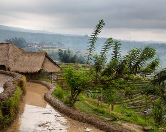 Paddy Fields Bali Travel Photo, Large Wall Decor, Landscape Photography, Contemporary Art, Photos on Wood