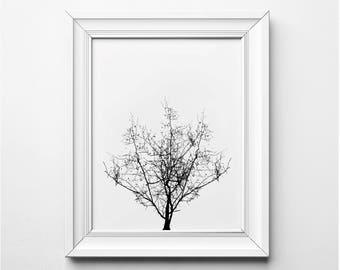 Tree Illustration, Tree Wall Art, Tree Art Print, Black and White Tree Art, Printable Tree, Minimalist Home Decor, Modern Art Illustration