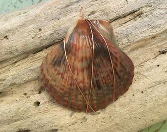 "earth tones shell pendant, copper wire wrap pendant, boho chic jewelry, shell jewelry, beach jewelry, coastal jewelry, 2"""