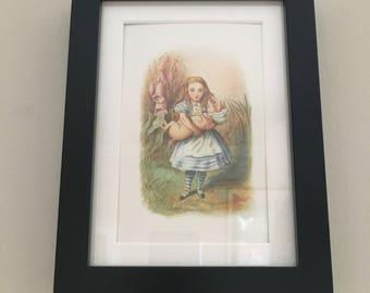 Classic Alice in Wonderland Illustration - framed Postcard - Alice with Pig